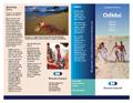 Brochure1 template