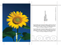 BusSet2 Post Card template